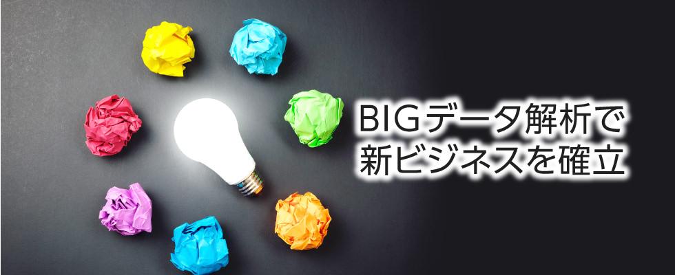 BIGデータ解析で新ビジネスの確立